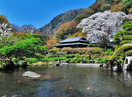 出典:http://shizuoka.mytabi.net/onsen/hakone/archives/yoshiike-ryokan.php
