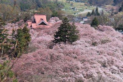 出典:http://kyyamayama.exblog.jp/15136065